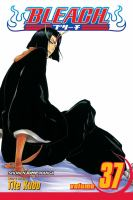 Bleach Vol. 37, Beauty is so solitary