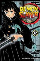 Demon Slayer Volume 12. The upper ranks gather /